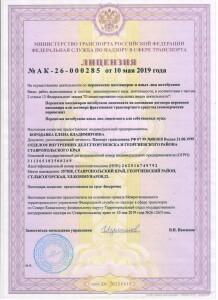 Лицензия Бородавка Е.В.